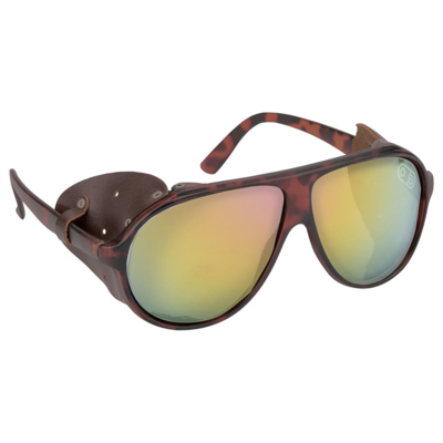 Airblaster Airblaster Polarized Glacier Glasses Tortoise
