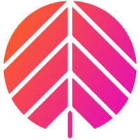 Snowboard, Surf & Streetwear Shop | Behind The Pines | Amsterdam