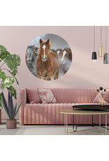 Dunnebier Home Muursticker Kudde paarden - verwijderbaar