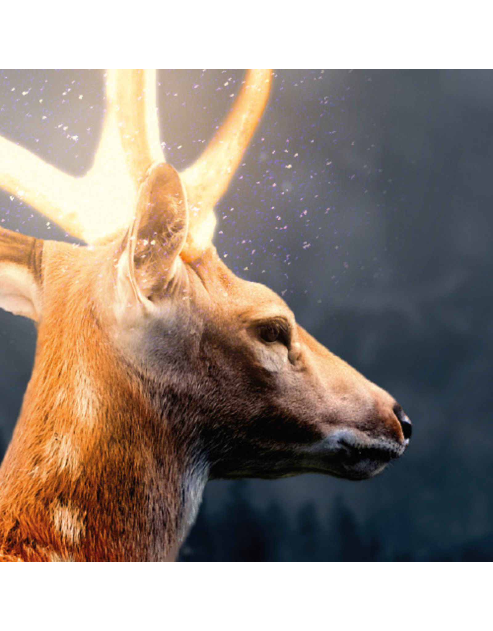 Dunnebier Home Muursticker Hert met gewei in de sneeuw - verwijderbaar