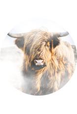 Dunnebier Home Muursticker Schotse Hooglander - verwijderbaar