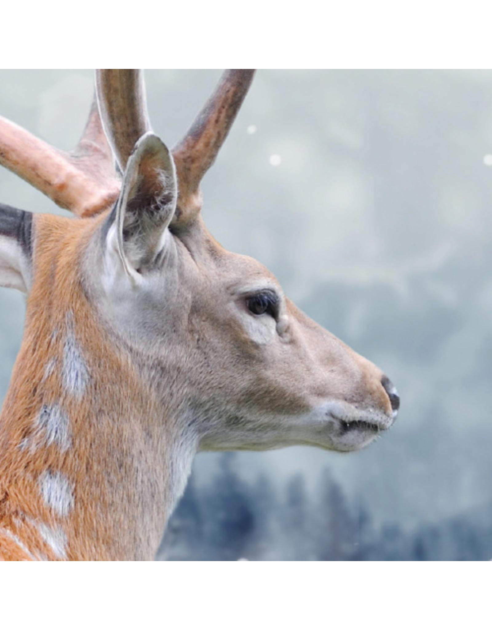 Dunnebier Home Muursticker Hert in de sneeuw - verwijderbaar