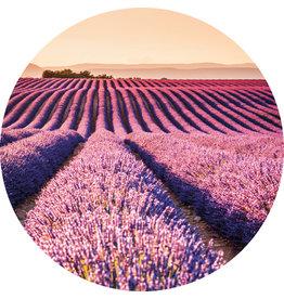 Dunnebier Home Muursticker Lavendel veld