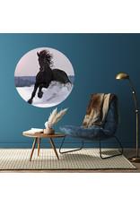 Dunnebier Home Muursticker Zwart paard in de sneeuw - verwijderbaar