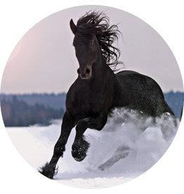 Dunnebier Home Muursticker Zwart paard in de sneeuw