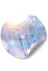 Dunnebier Home Muursticker Bloemen bedekt met ijs - verwijderbaar
