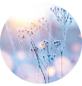 Dunnebier Home Muursticker Bloemen bedekt met ijs