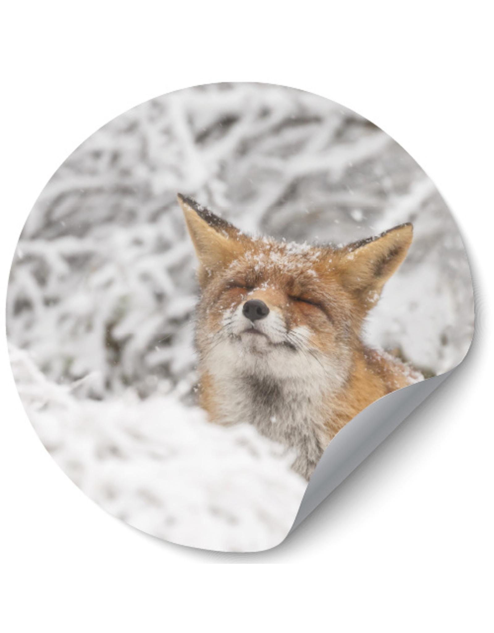 Dunnebier Home Muursticker Vos in de sneeuw - verwijderbaar