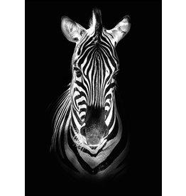 Dunnebier Home Poster Zebra zwart