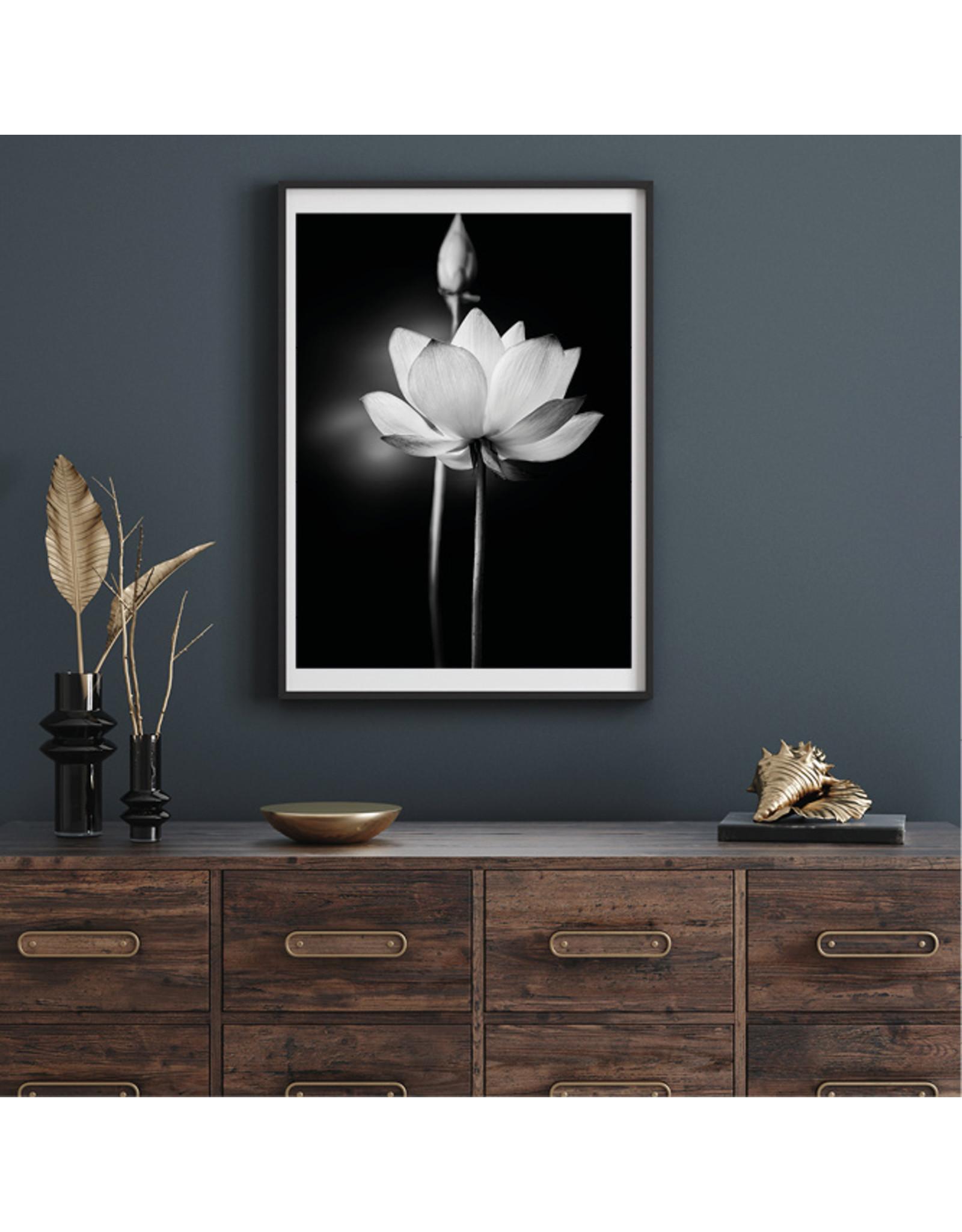 Dunnebier Home Poster Witte Lotus op zwarte achtergrond