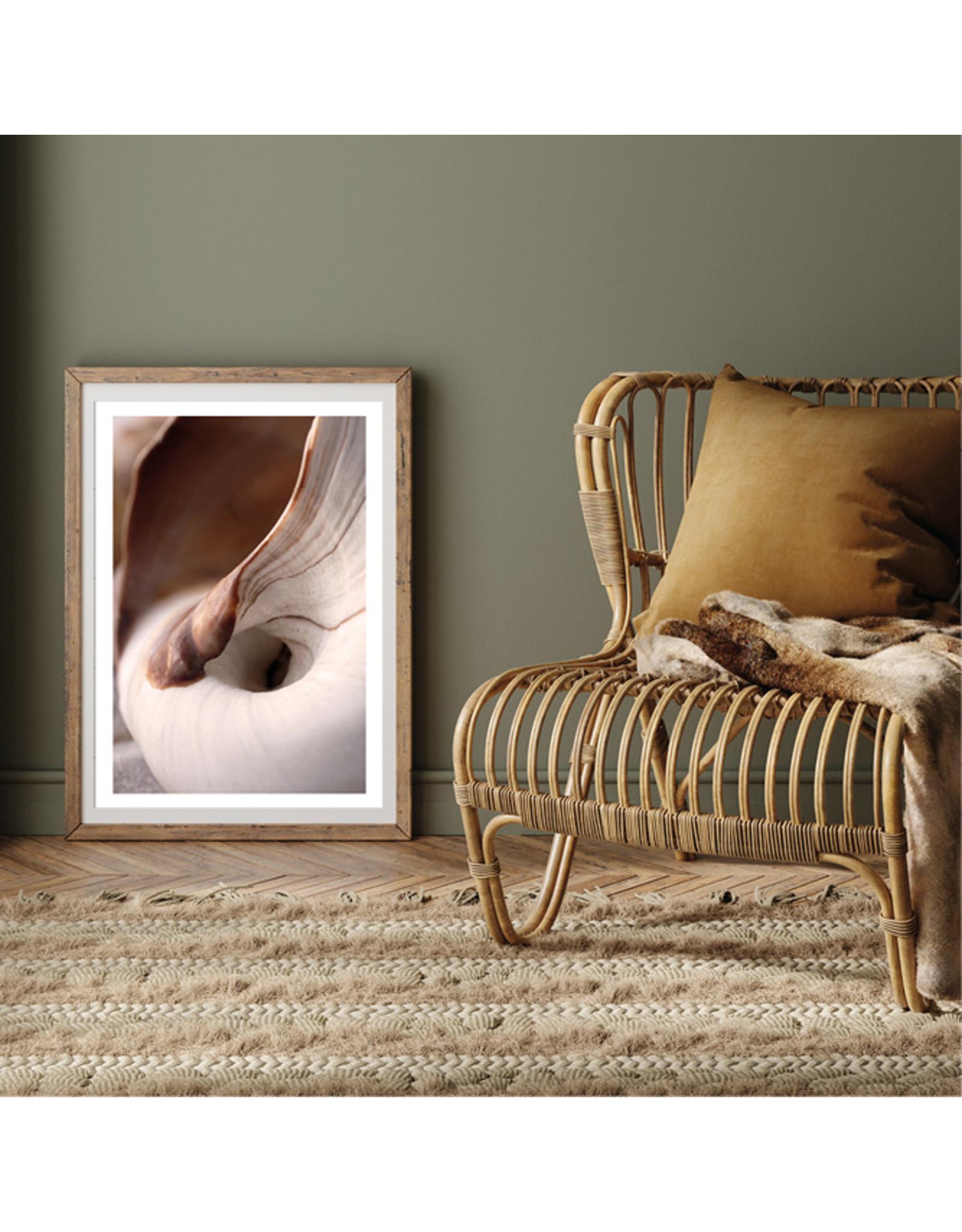 Dunnebier Home Poster Schelp close up