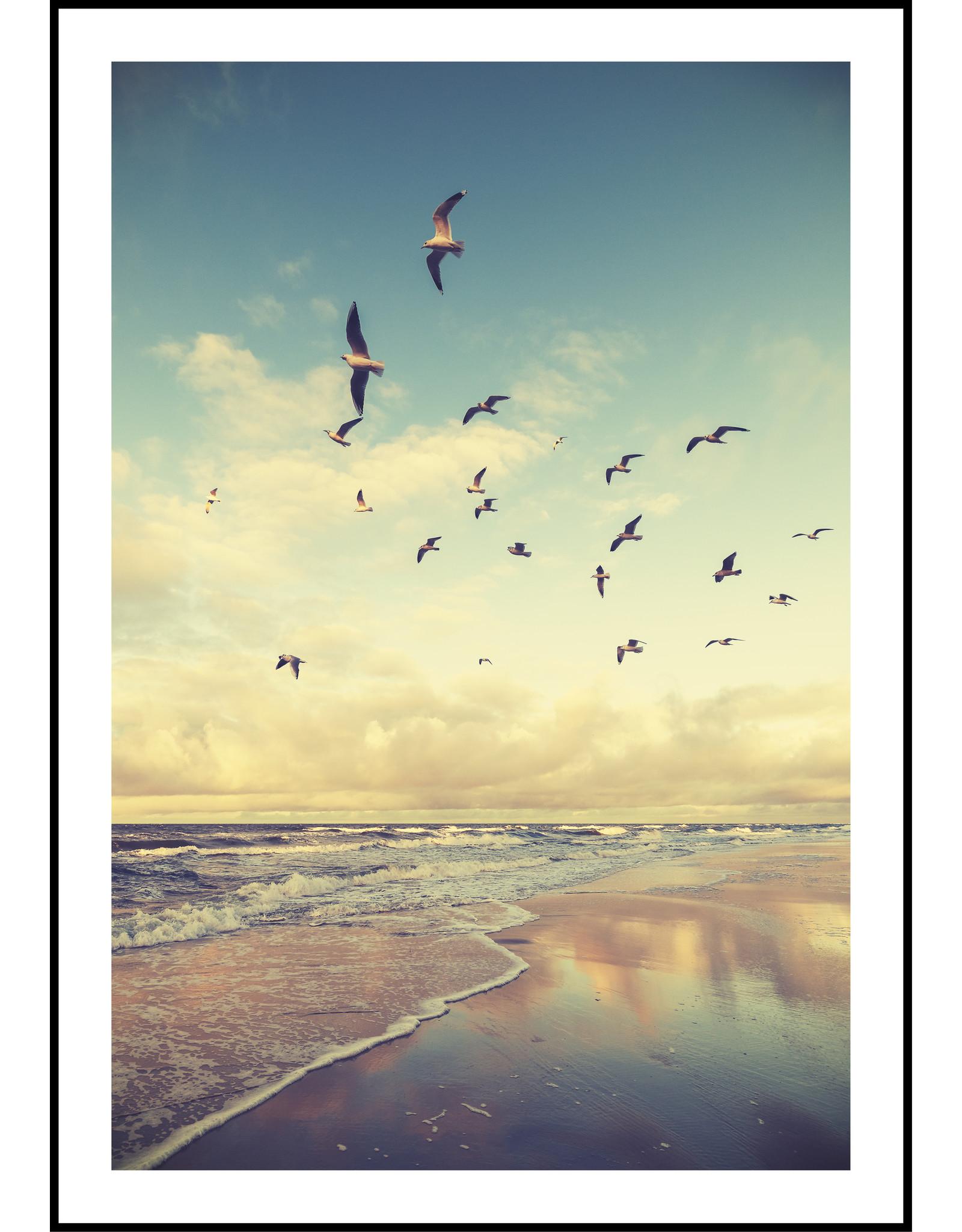 Dunnebier Home Poster Meeuwen op het strand