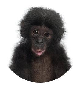 Dunnebier Home Muursticker Chimpansee baby