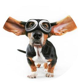 Dunnebier Home Muursticker Hond met pilotenbril