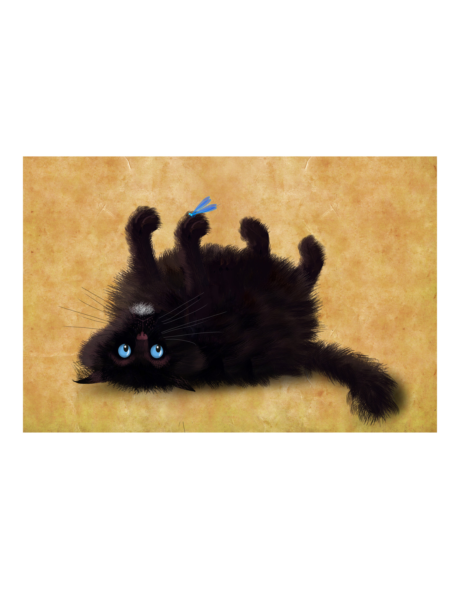 Dunnebier Home Poster Black Cat_No2