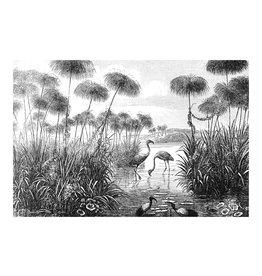 Dunnebier Home Poster Illustratie van Flamingo's_Brockhaus