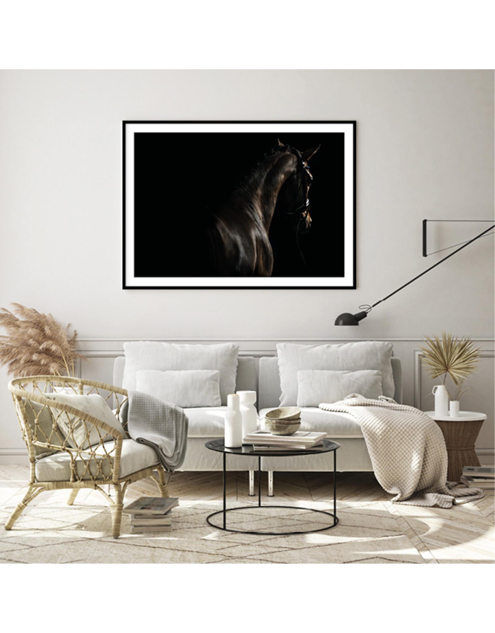 Dunnebier Home Poster Zwart paard