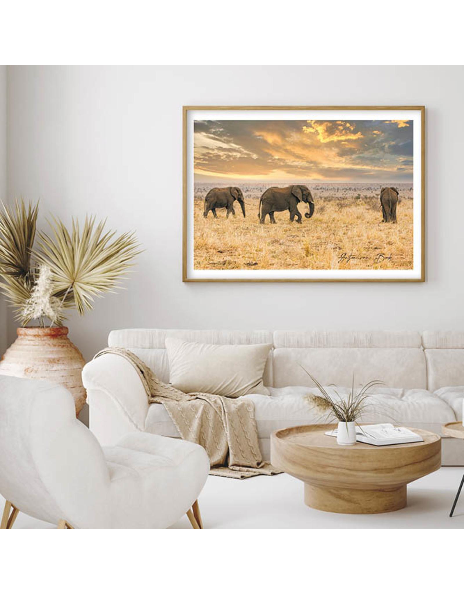 Dunnebier Home Poster Olifanten - Anton van Beek Collectie