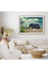 Dunnebier Home Poster Olifant - Anton van Beek Collectie