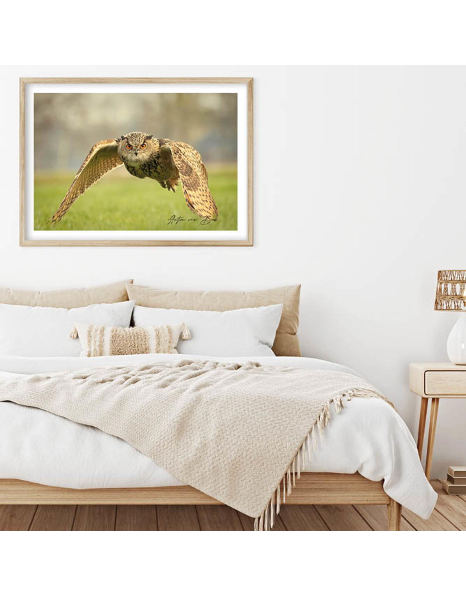 Dunnebier Home Poster Oehoe - Anton van Beek Collectie