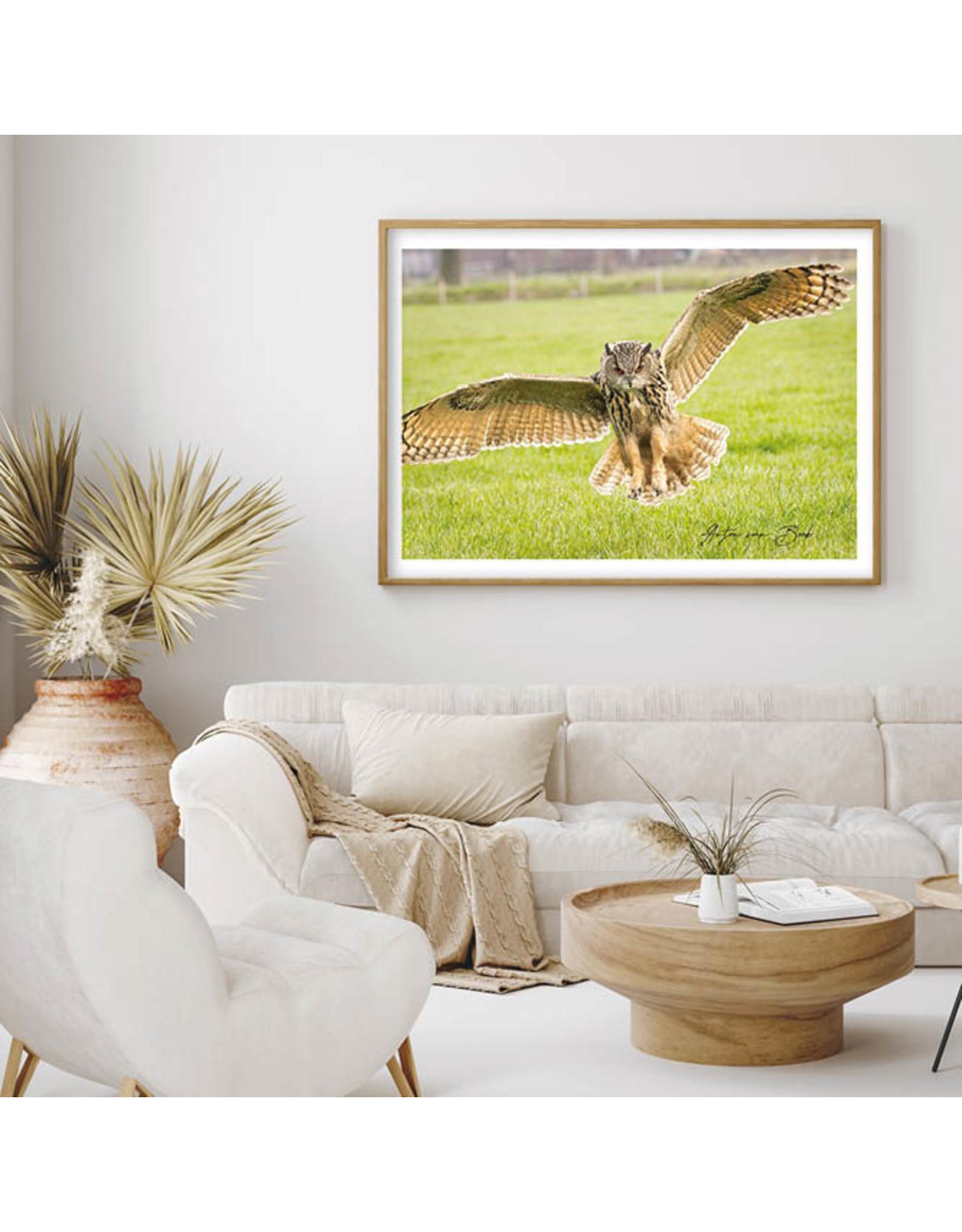 Dunnebier Home Poster Oehoe_2 - Anton van Beek Collectie