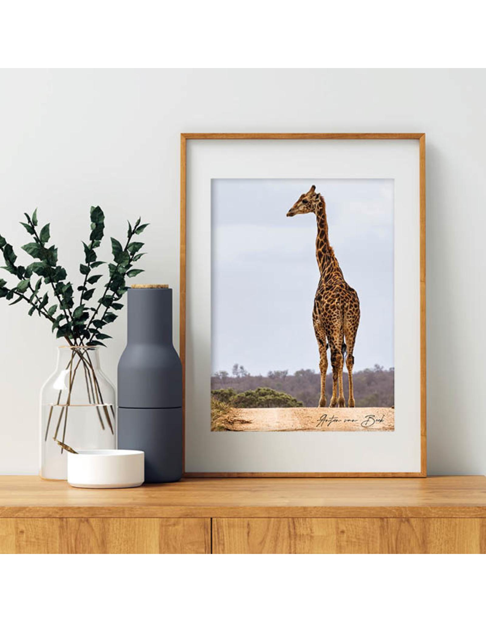 Dunnebier Home Poster Giraffe - Anton van Beek Collectie