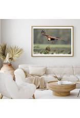 Dunnebier Home Poster Bruine Kiekendief_2 - Anton van Beek Collectie