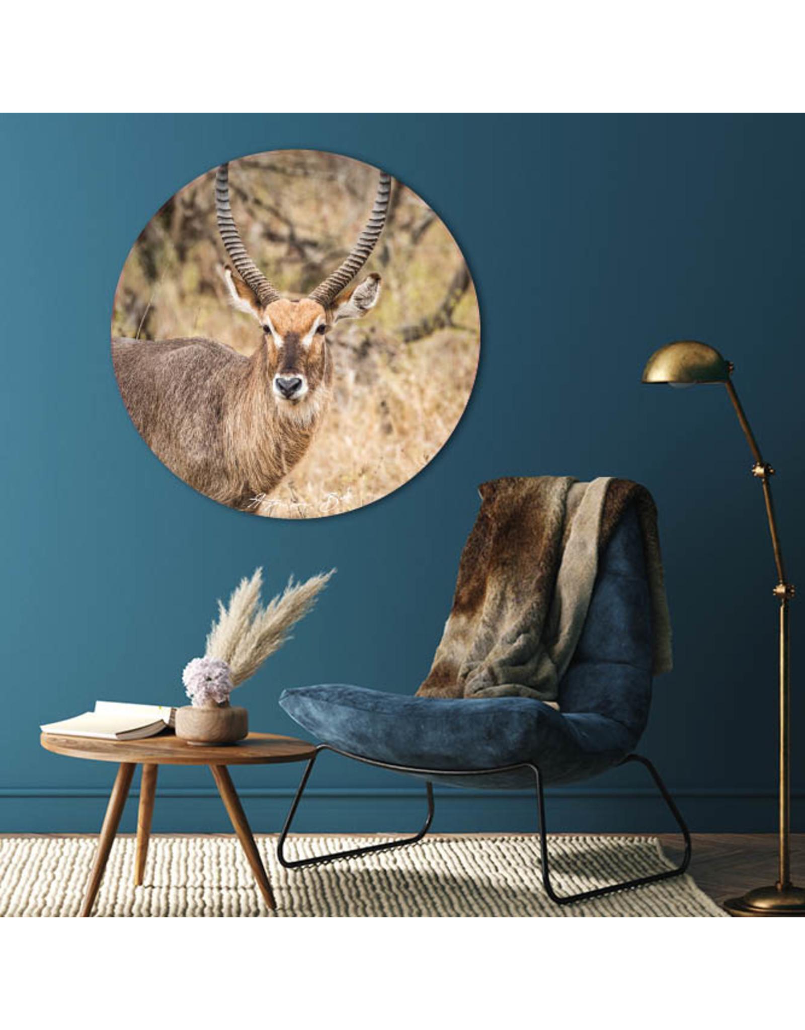 Dunnebier Home Muursticker Waterbok - verwijderbaar