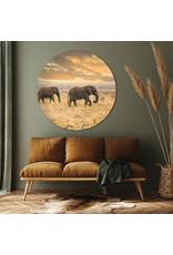 Dunnebier Home Muursticker Olifanten - verwijderbaar