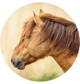 Dunnebier Home Muursticker Konik paard