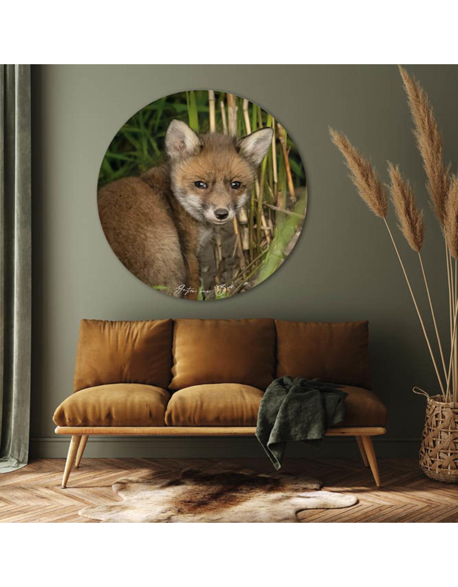 Dunnebier Home Muursticker Jong vosje - verwijderbaar