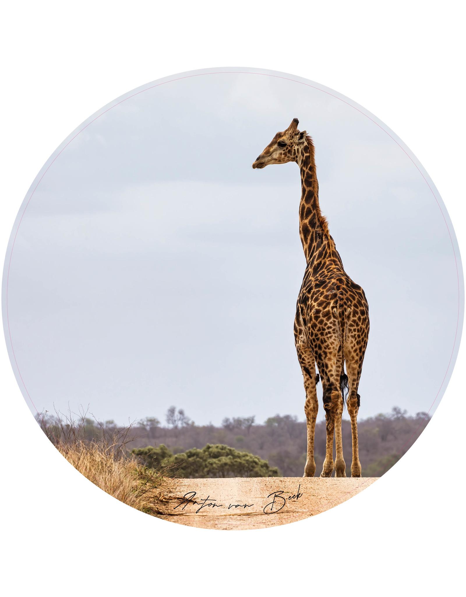 Dunnebier Home Muursticker Giraffe - verwijderbaar