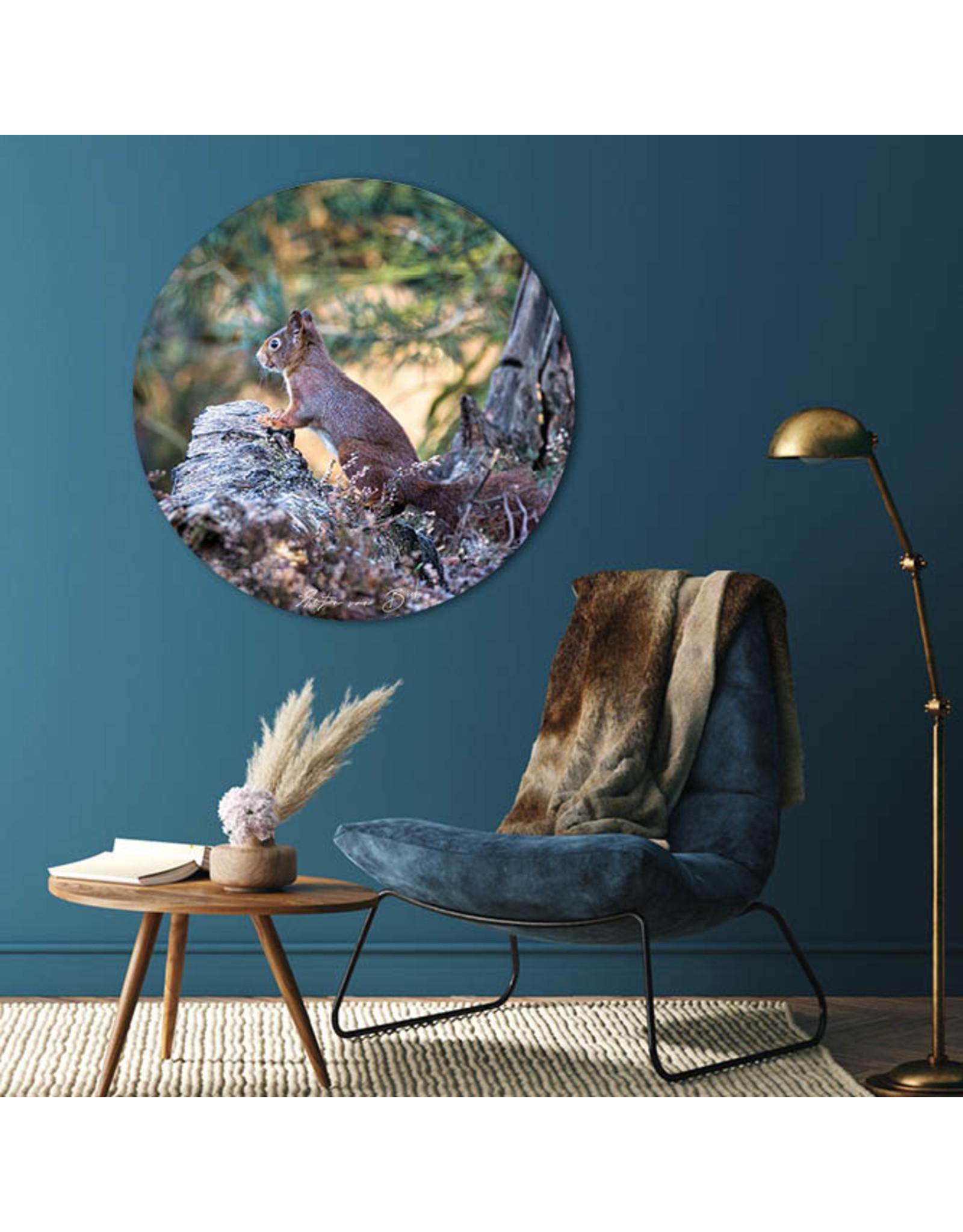 Dunnebier Home Muursticker Eekhoorn - verwijderbaar