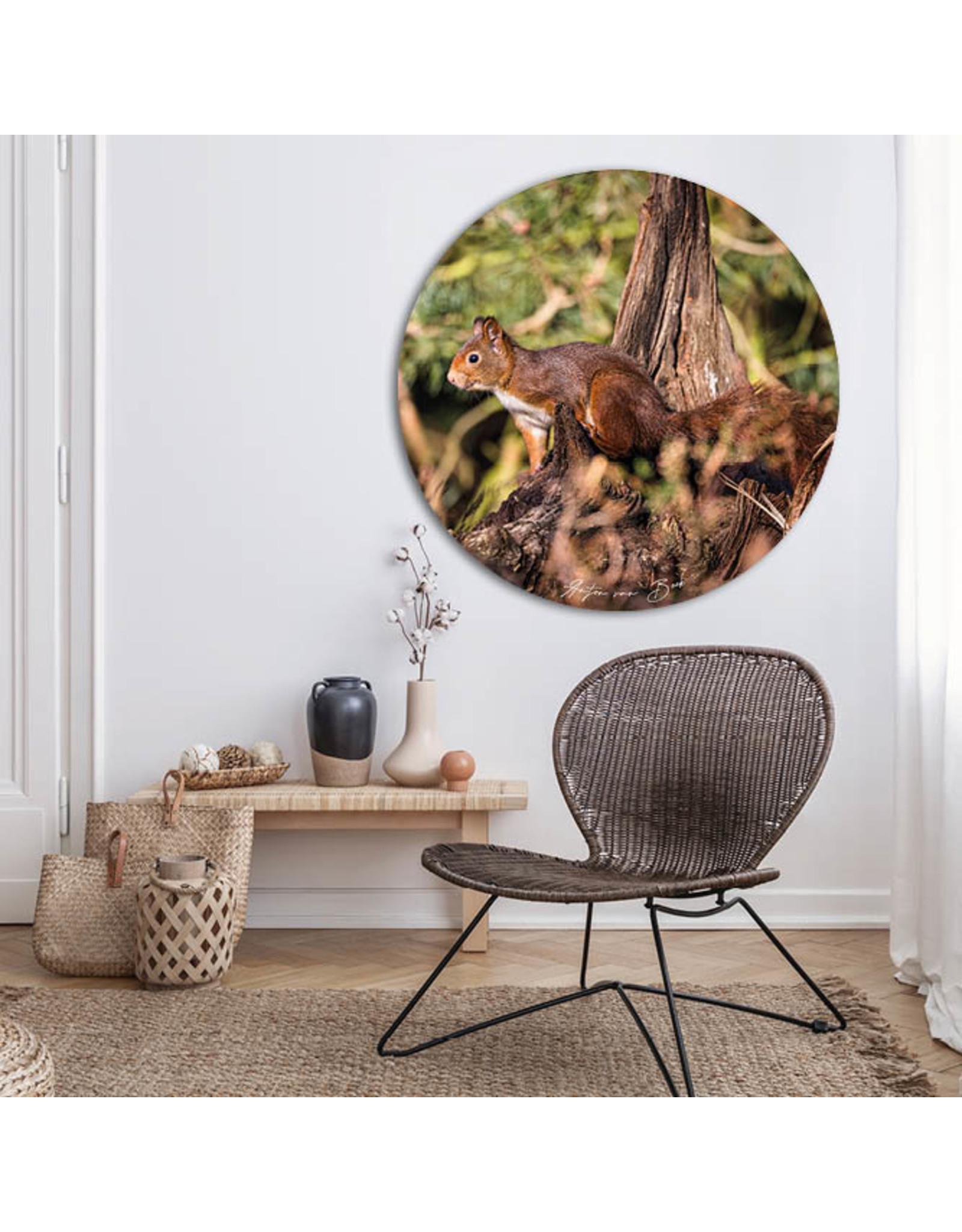 Dunnebier Home Muursticker Eekhoorn_3 - verwijderbaar