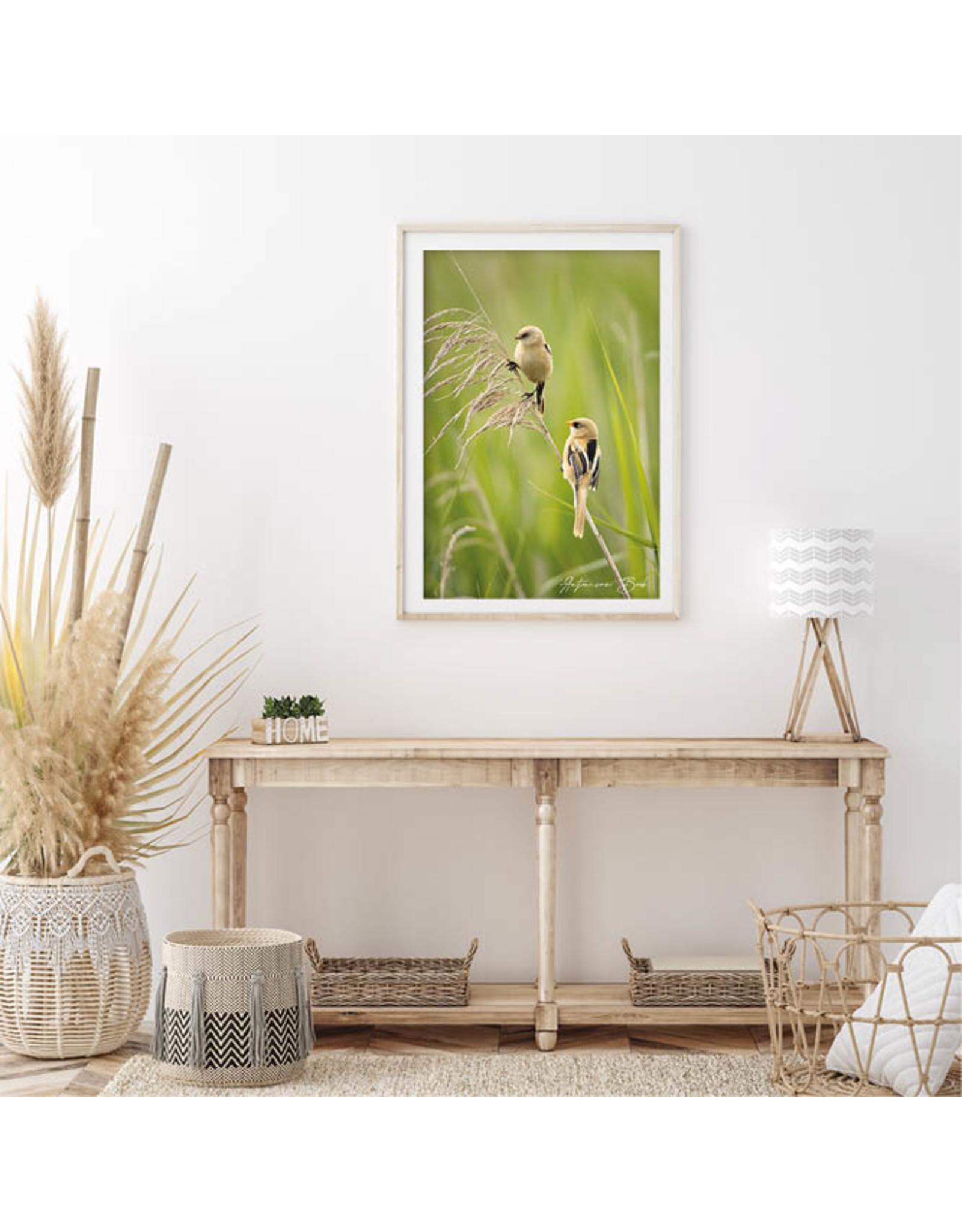 Dunnebier Home Poster Baardman - Anton van Beek Collectie