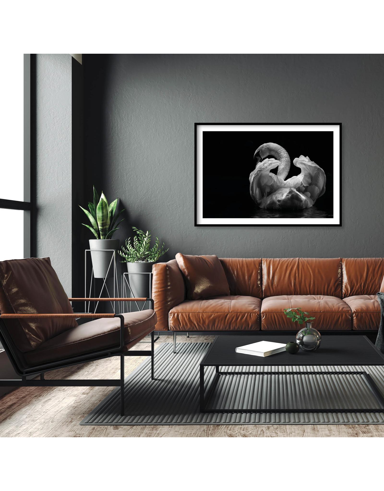 Dunnebier Home Poster Zwaan op zwarte achtergrond