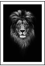 Dunnebier Home Poster Leeuw Zwart