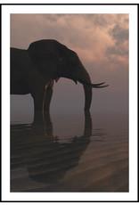 Dunnebier Home Poster Olifant aan het strand