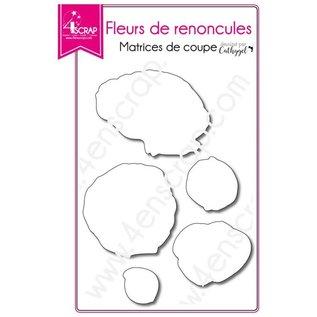4enscrap RANONKELS - FLEUR DE RENONCULES