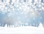 Kerst - Nieuwjaar - Winter