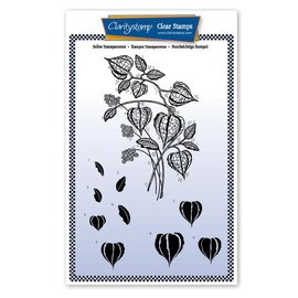 Groovi BARBARA'S CHINESE LANTERN FLORAL SPRAY A5 UNMOUNTED STAMP SET