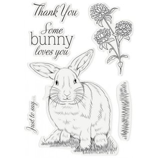 Crafters Companion CC - Some Bunny Loves You  6st