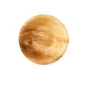 Pure Schalen, Palmblad 'pure' rond 200 ml _ 13 cm x 3 cm