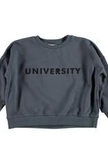 Piupiuchick Sweatshirt Anthracite with 'university' print kid