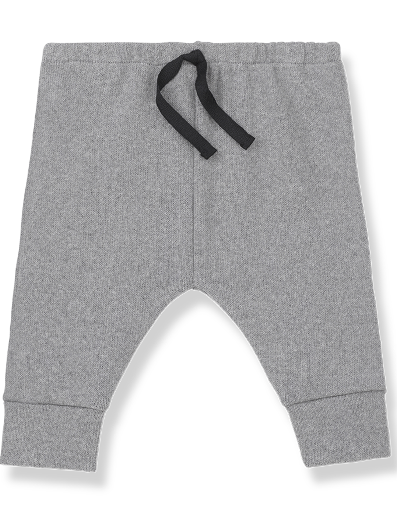 1+ in the family Pants light grey