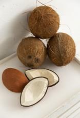 Oli & Carol Coco the coconut