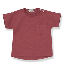 1+ in the family Short sleeve t-shirt red