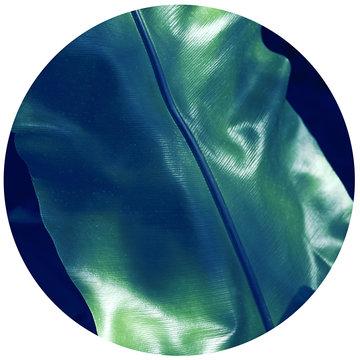 """Serie """"Green"""" Green 4"""