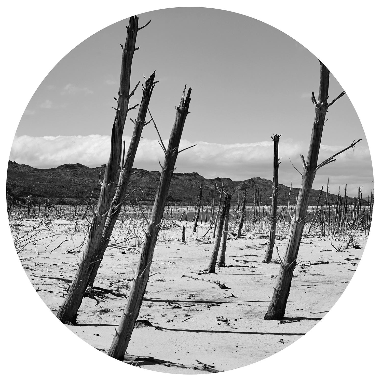 """Serie """"Desert"""" Desert 5"""