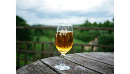 Biologisch bier kopen. Heel eenvoudig bij CraftOnly.nl